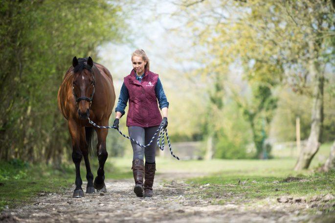 Sian Walking Horse