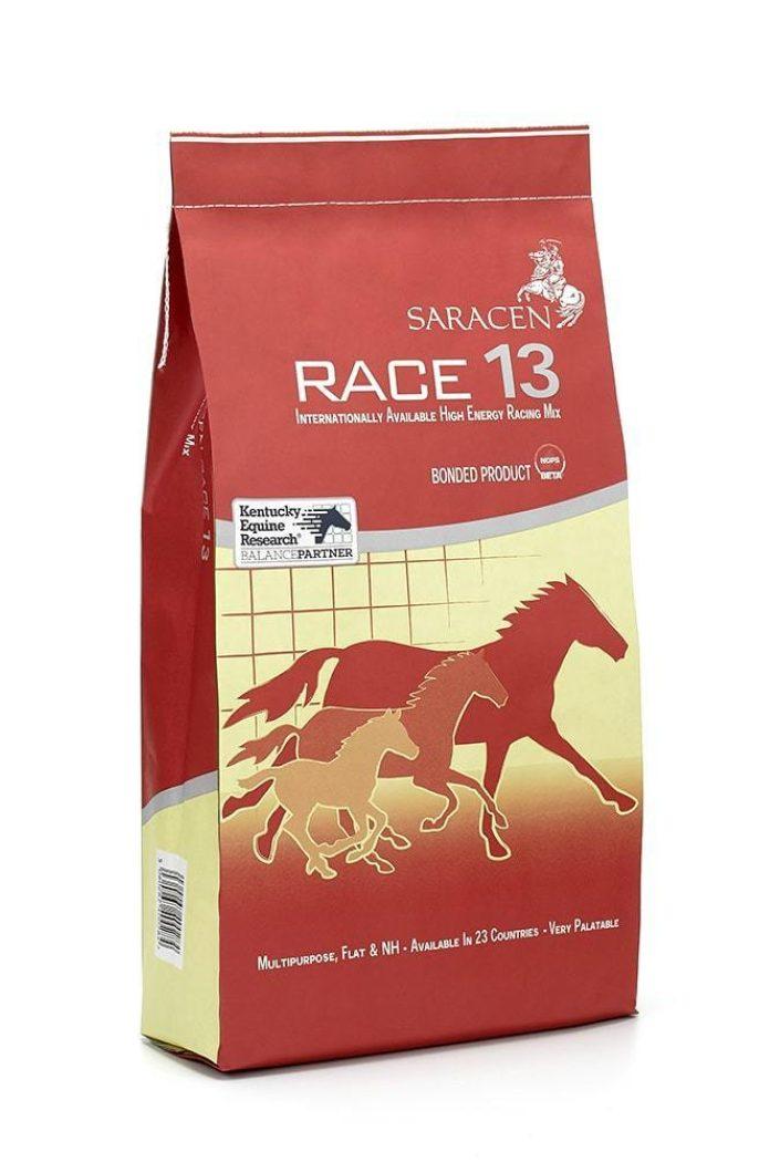 Revised bag race 13 reduced h1000px 144ppi min