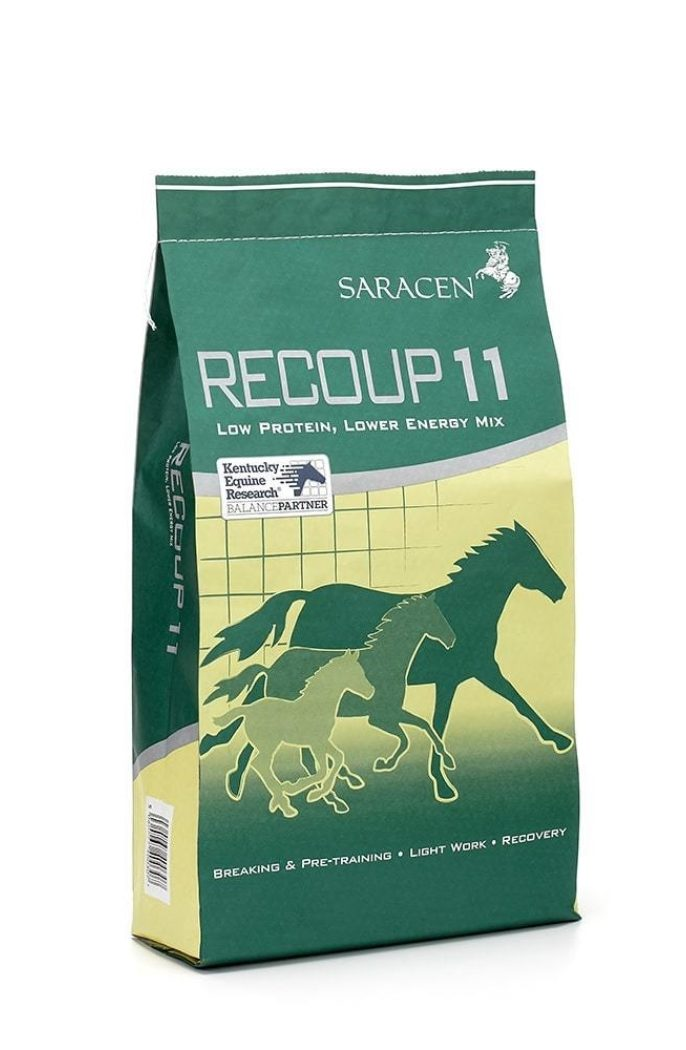 Revised bag recoup 11 reduced h1000px 144ppi min