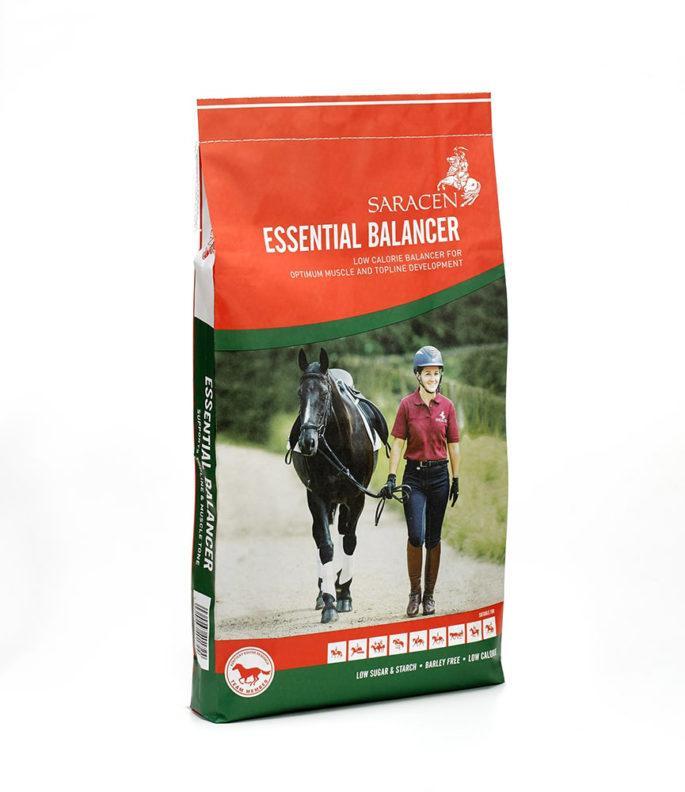 Bag essential balancer revised reduced h1000px 144ppi min