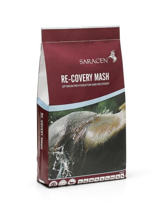 'RE-COVERY MASH' image
