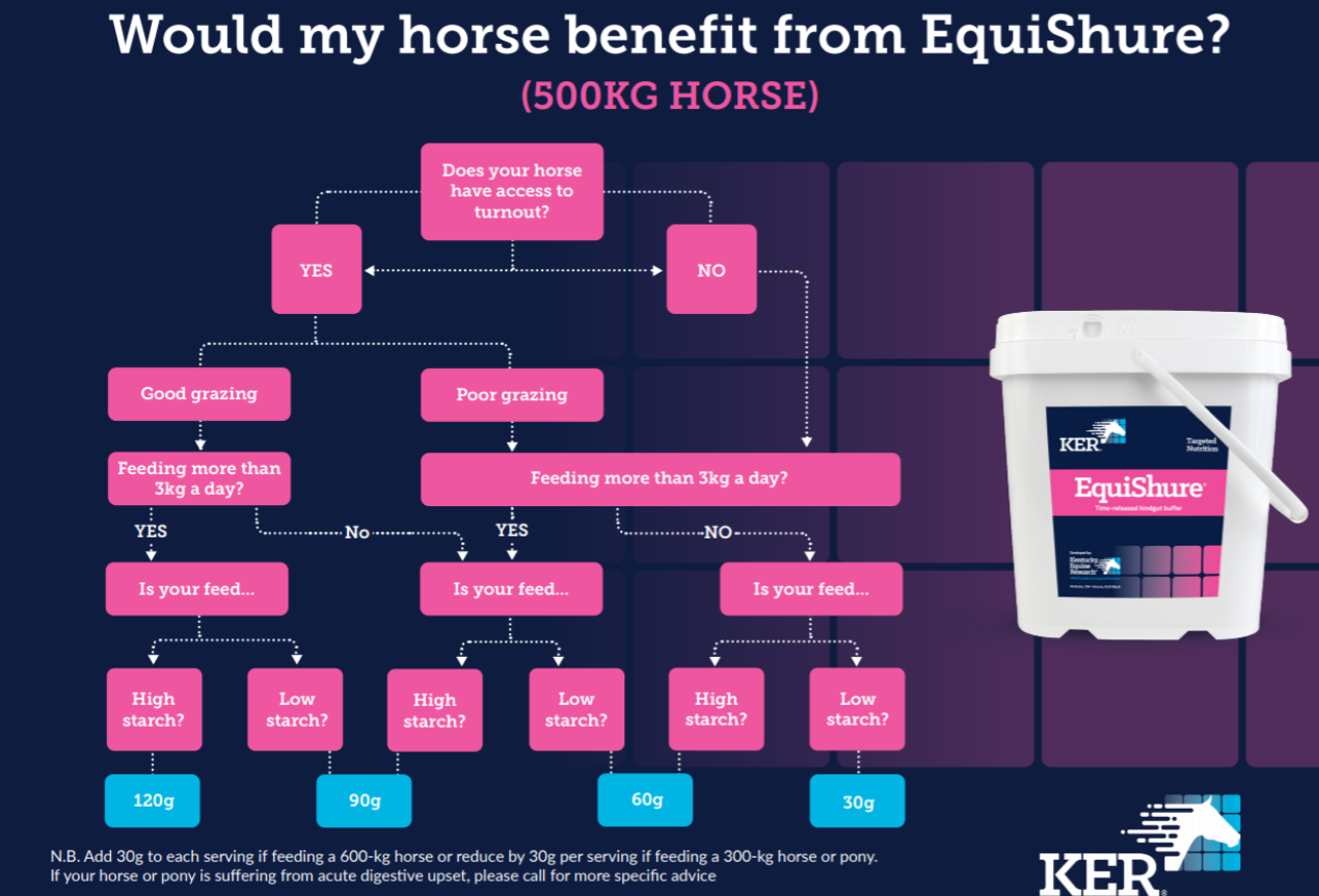 Would my horse benefit from EquiShure?